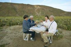 喝白葡萄酒的四个老年人 免版税图库摄影