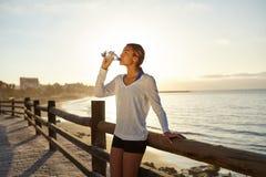 喝能量饮料的年轻慢跑者 库存照片
