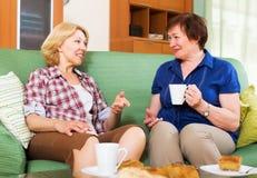 喝茶和聊天在lunc的停留期间的妇女同事 免版税库存图片