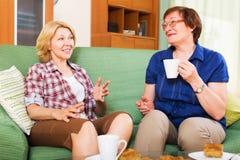 喝茶和聊天在lunc的停留期间的愉快的同事 图库摄影