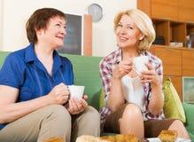 喝茶的两名成熟妇女 免版税库存照片