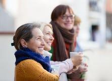 喝茶的资深妇女在阳台 库存图片