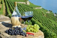 酒在Lavaux地区,瑞士 库存照片