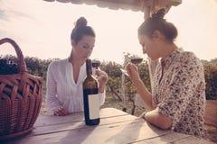 喝酒的两名美丽的妇女 免版税库存照片