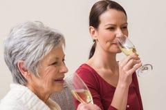 喝香槟的妇女画象  库存照片