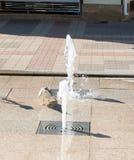 喝从一只海鸥的喷泉在波摩莱的中心,保加利亚 图库摄影