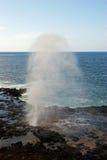 喷出的垫铁在夏威夷 免版税库存图片