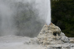 喷发喷泉 库存照片