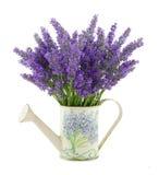 喷壶用淡紫色 免版税库存图片