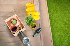 喷壶,染黄起动和植物木箱的 免版税库存图片