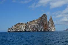 喷射器岩石加拉帕戈斯 免版税库存照片
