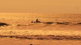 喷气机在海的滑雪乘驾挥动在日落 两个人有效地度过他们的假期在手段 在的人的剪影 影视素材