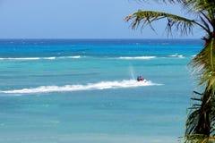喷气机滑雪在与棕榈树的蓝色海背景中 图库摄影