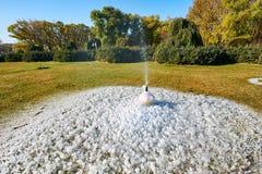 喷水的注射器和冰和树在草坪在公园 库存图片