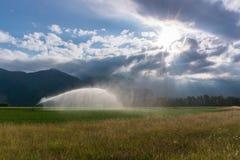 喷水隆头和灌溉系统在一个新近地被种植的农业领域在多云传神天空下与早晨太阳发光 库存图片