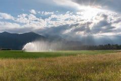 喷水隆头和灌溉系统在一个新近地被种植的农业领域在多云传神天空下与早晨太阳发光 免版税库存图片