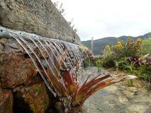 喷泉一点 库存照片