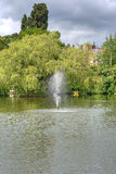喷泉前结构树 库存照片