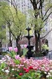 喷泉和开花的床在麦迪逊广场 免版税图库摄影