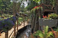 喷泉和花床之间的竹路径 免版税库存图片