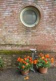 喷泉和郁金香 免版税库存照片