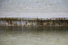 喷泉和水注在一明亮晴朗 库存照片