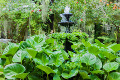 喷泉在一个绿色英国庭院里 图库摄影