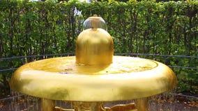 喷泉在公园 股票视频