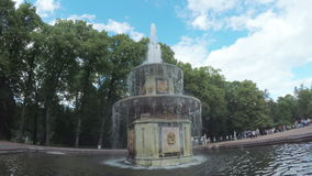 喷泉在公园Peterhof 股票录像