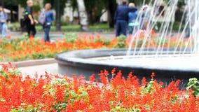 喷泉在城市公园,被弄脏的背景 影视素材