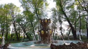 喷泉在夏天庭院,可以晚上 彼得斯堡圣徒 影视素材