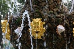 喷泉在夏天庭院,彼得斯堡里 免版税图库摄影