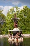 喷泉在庭院里,圣・ Ildefonso 库存照片