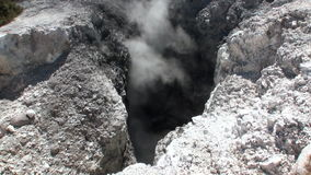 喷泉在新西兰浇灌土壤背景的温泉城  股票视频