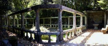 喷泉在森林里 免版税库存图片