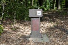 喷泉在森林 库存照片