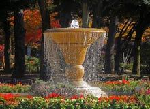 喷泉在横滨公园,采取在秋天 库存照片