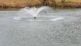 喷泉在池塘的中心 免版税库存图片