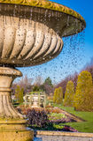 喷泉在董事公园在伦敦 免版税图库摄影