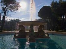 喷泉在里米尼以马头为特色的意大利 免版税库存照片