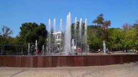 喷泉在镇中心 股票视频