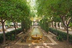 喷泉在霍特del Rei庭院里  免版税库存图片