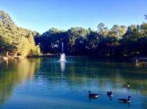喷泉在洛曼家 库存图片
