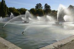 喷泉在巴特锡公园,伦敦,英国 库存照片