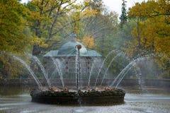 喷泉太阳在秋天Peterhof 免版税库存照片