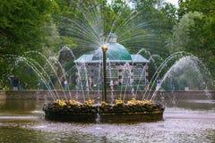喷泉太阳在Peterhof,在圣彼得堡附近,俄罗斯 免版税图库摄影