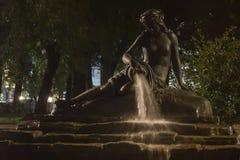 喷泉宝瓶星座在晚上 免版税库存照片