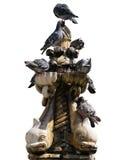 喷泉小onofrio的鸽子s 免版税库存图片