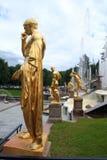 喷泉庭院peterhof 库存照片