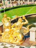 喷泉彼得斯堡petrodvorets st 免版税库存照片